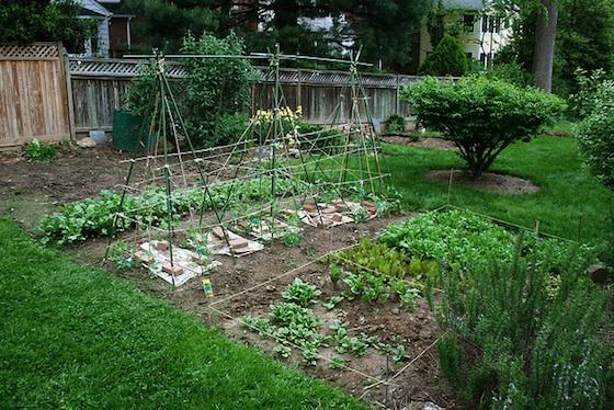 garden_1_woodleywonderworks-rev
